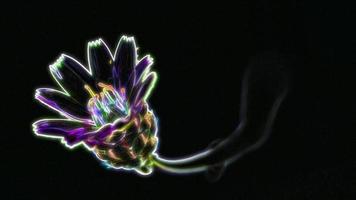 flor de neón brillante