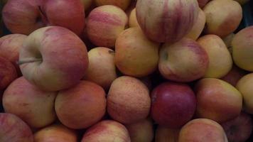 un mucchio di mela rossa matura
