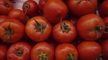 uma pilha de tomate maduro video