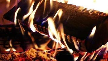 quemando fuego de madera y cenizas video