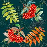 Seamless pattern with Rowan berry and leaves