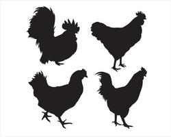 chicken silhouette set,  isolated vector on a white background