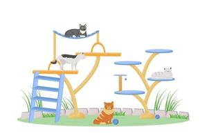 Cats on play tower