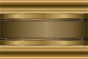 Metallic gold panels with screws on perforated texture vector