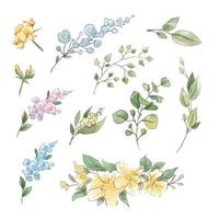 Large set of watercolor tender flowers and leaves