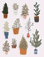 conjunto de elementos de decoración de plantas de navidad