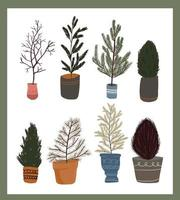 Christmas plants decor elements set