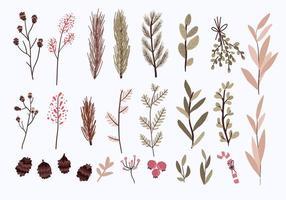 conjunto de elementos de decoración de plantas de navidad vector