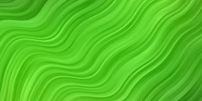 Light Green background with wry lines.