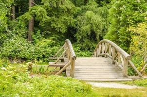 Wooden Bridge Along a Trail photo