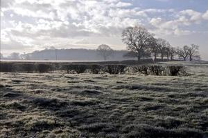 Crisp Frosty Morning in English Countryside photo