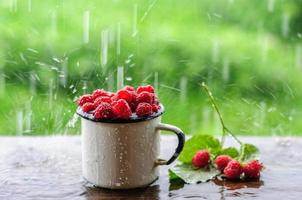 Lata blanca y taza con frambuesa fresca en lluvia foto