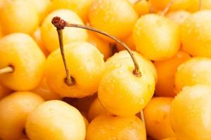 yellow cherry
