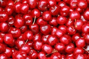 cherry selection
