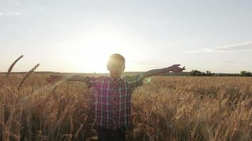 boy runs through a wheat field at sunset