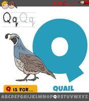 Letra q con carácter animal pájaro codorniz vector