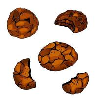 Christmas chocolate cookies icons set vector