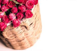 Beautiful bouquet of red roses in basket, isolated on white photo
