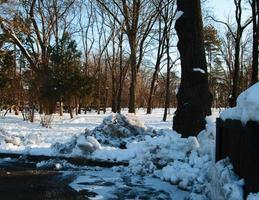 Park over winter