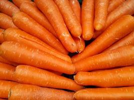 Group of carrots background