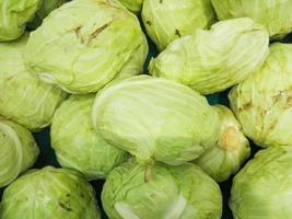 Group of cabbages