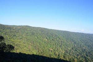 Landscape in the Khaoyai National Park