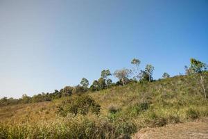 Landscape in the Khao Yai National Park