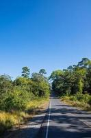 Landscape at Khao Yai National Park
