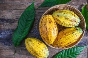 Fresh cocoa in basket