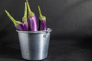 Eggplant in a bucket photo