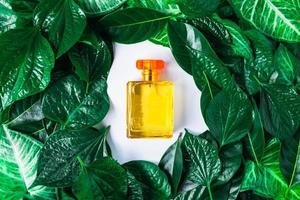 Perfume bottle on a leafy background