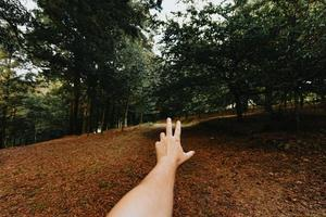 Hand in the middle of the forest photo