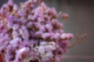 flores rosadas borrosas