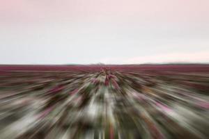 escena de campo borrosa foto