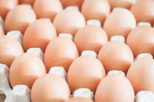 Close-up of eggs in a crate photo