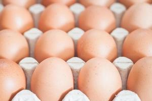 Eggs in a crate photo