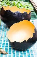cáscara de huevo de avestruz