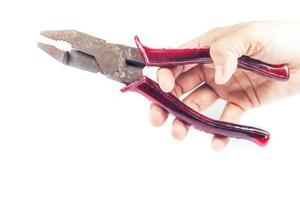 Person holding pruning shears