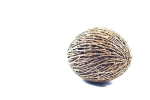 Cerbera oddloam seed isolated on a white background