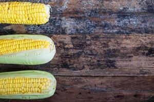 tres mazorcas de maíz foto