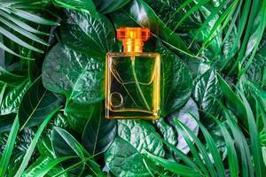 una botella de perfume con hojas foto