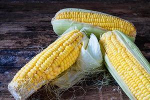 Yellow corn ears photo