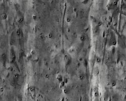 textura de acero oxidado