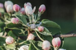 Engagement ring on pink petals
