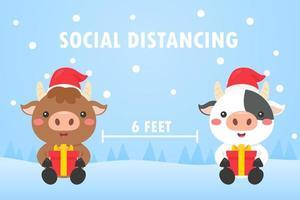 Christmas cows do social distancing vector
