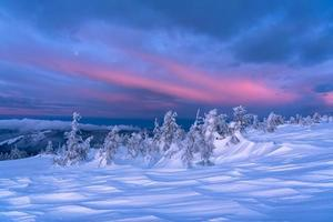 Winter landscape at sunrise photo