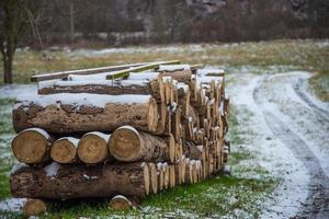 Pile of wood logs on green grass field during daytime