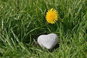 Piedra gris en forma de corazón sobre la hierba verde