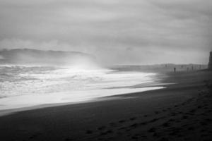 Seashore in grayscale