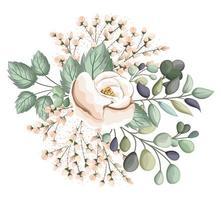 flor rosa blanca con capullos y hojas de pintura vector